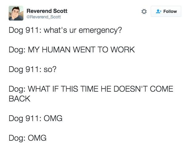 Reasons Dogs Would Call - 10 hilarious conversations dogs have dial 911