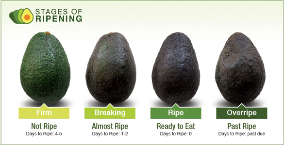 how to know avocado is ready to eat