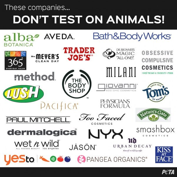 No Need To Spend A Fortune On These: You Can Help End Animal Testing With These Cruelty-Free Brands