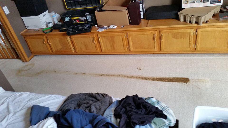 Poop Rug