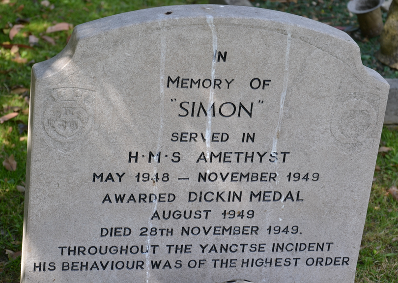 Simon RIP