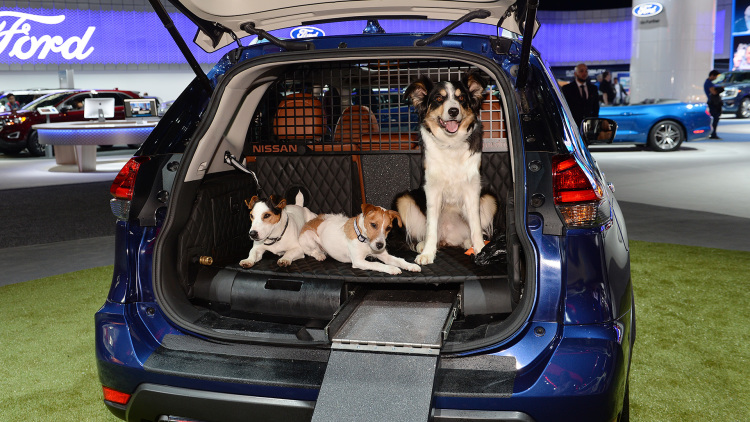 Car Harness Dog >> Nissan Unveils Rogue Dogue Vehicle For Dog Owners