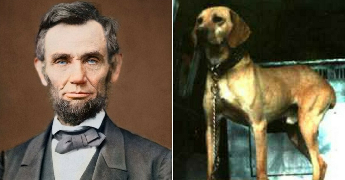 What Is Considered Dairy >> Dog Lovers Everywhere Owe Abe Lincoln A Big Thank You