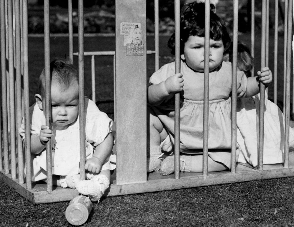 airing out your baby in a window cage used to actually be a thing
