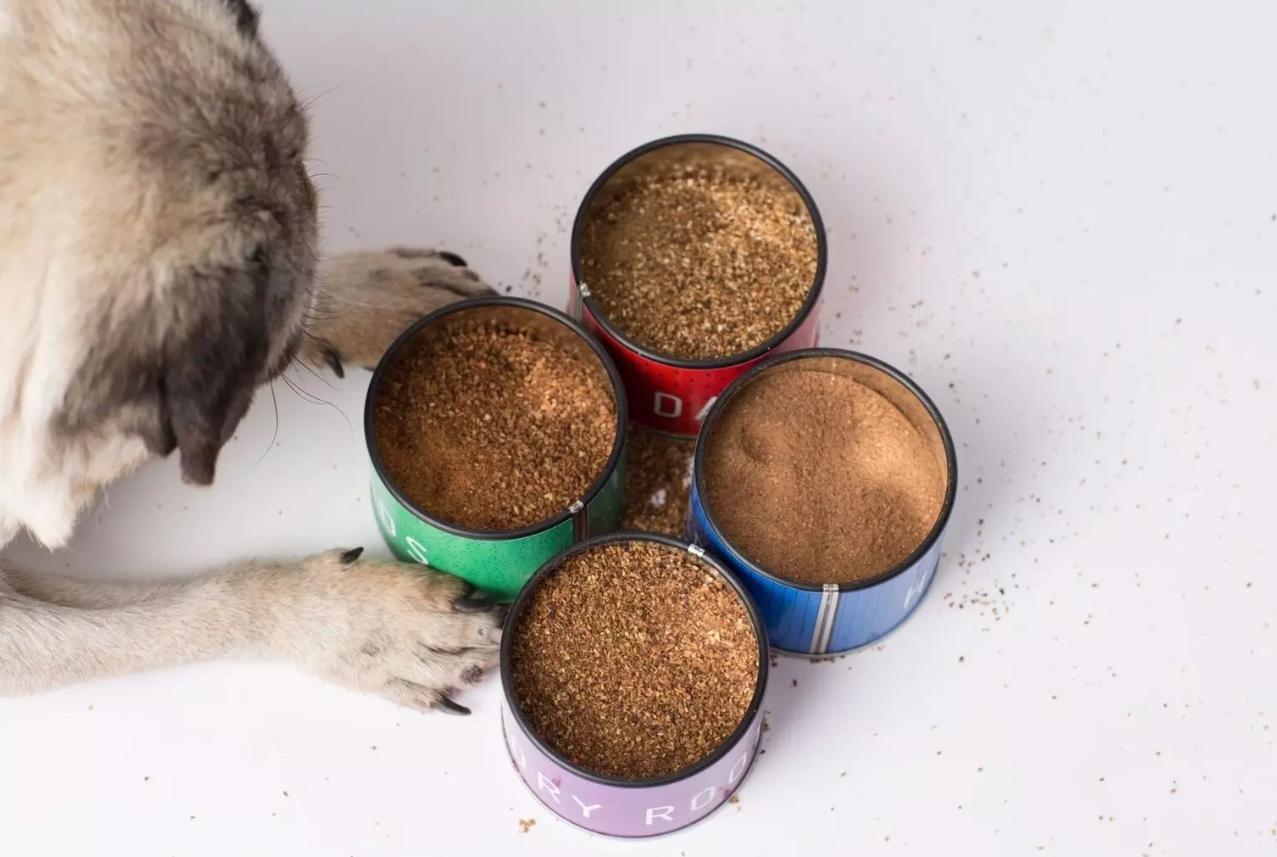 Shoo coffee with dog