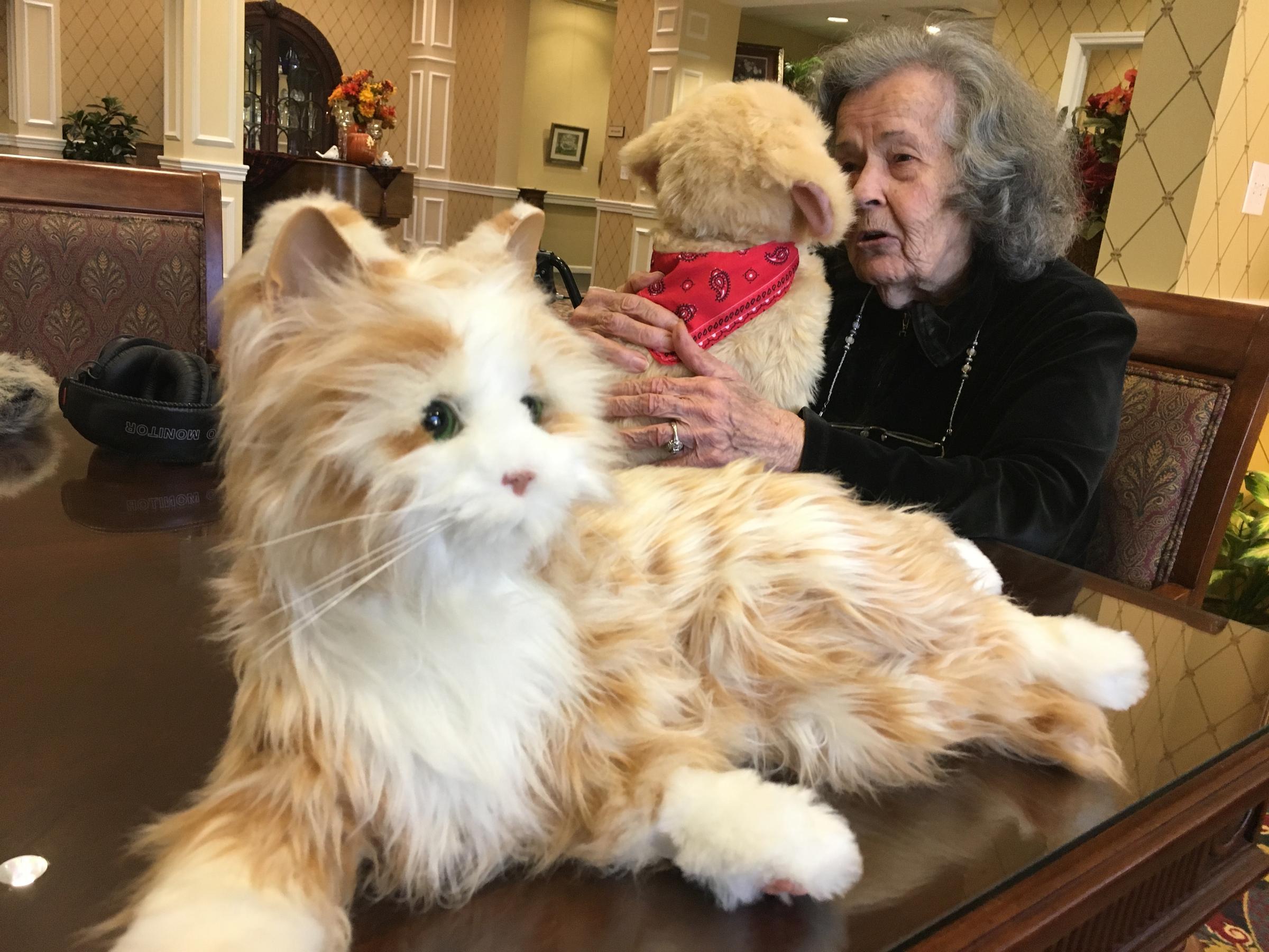 Senior with robotic pets