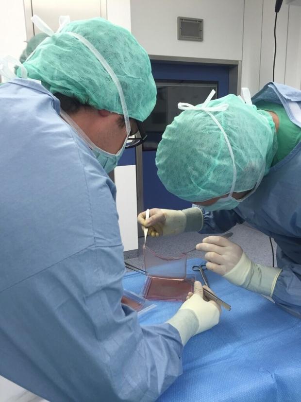 Skin transplant