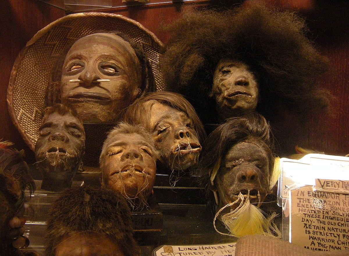 Pygmy heads