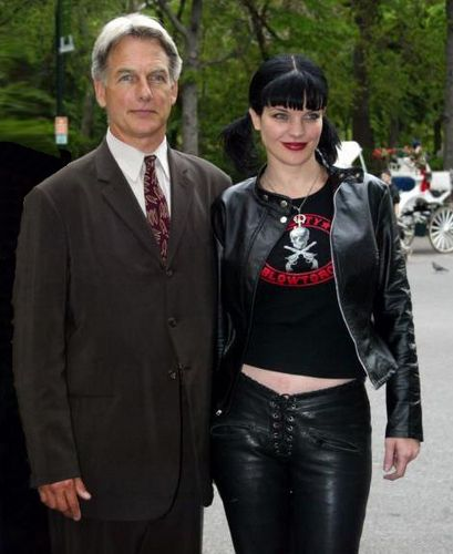Pauley Perrette Wedding: Pauley Perrette Left 'NCIS' Because Of A Dog