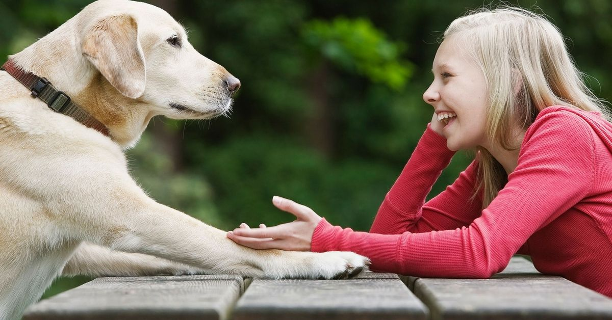 What's Your Pooch Saying? In A Few Years You Can Translate Dog Barks To English