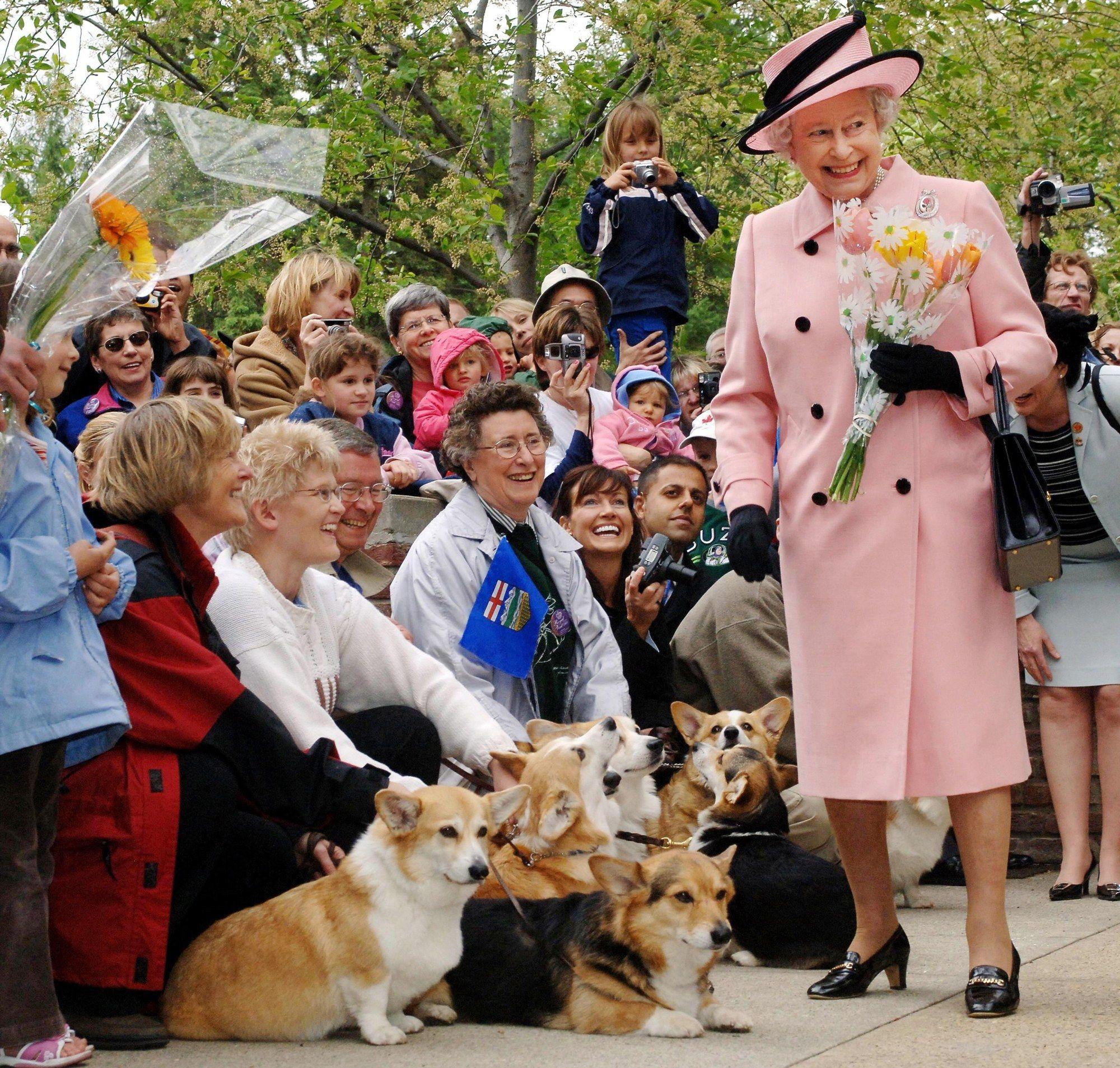 Queen Elizabeth II and her corgis