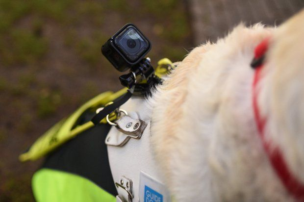 The GoPro