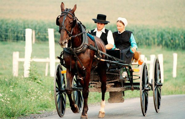 Courtship and Marriage - How the Amish Work