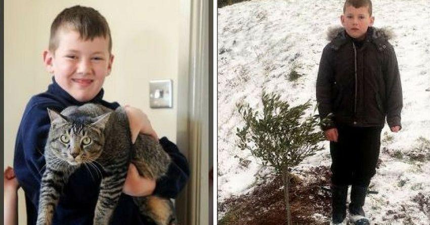 Keluarga ini Baru Saja Menguburkan Kucing, 2 Hari Kemudian Muncul ...