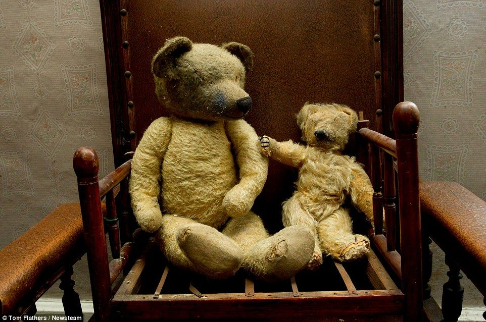 Two toy bears