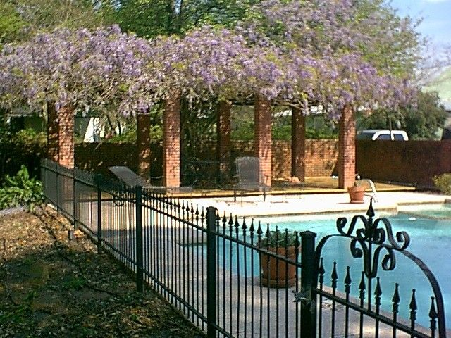 Steel Magnolias backyard and pool