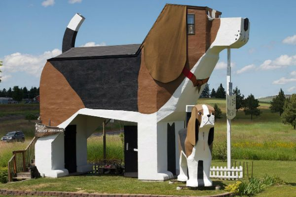 Dog's Bark Inn