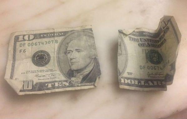 A ripped $10 bill.