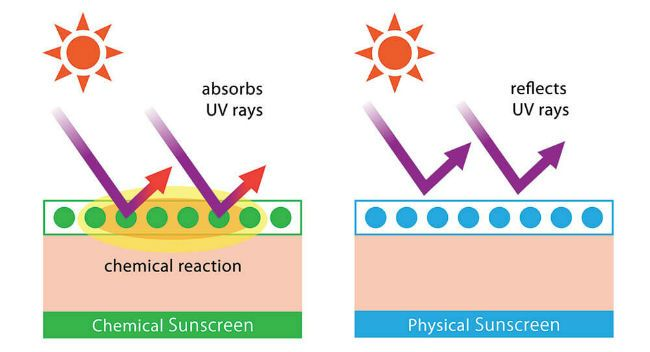 Sunscreen Types