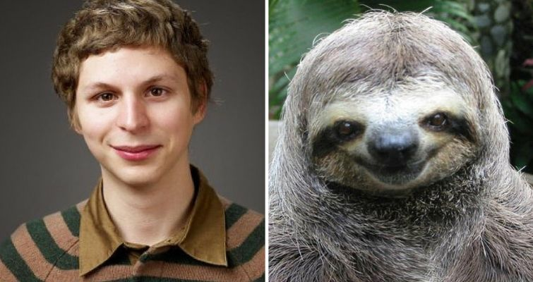 Michael Cera and a sloth
