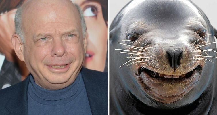 Wallace Shawn and a seal