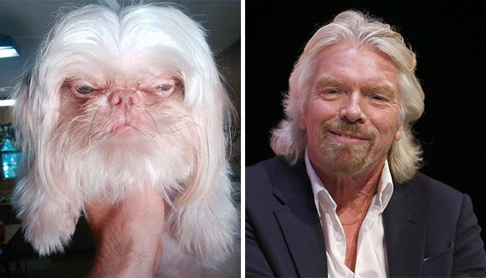 Richard Branson and a dog