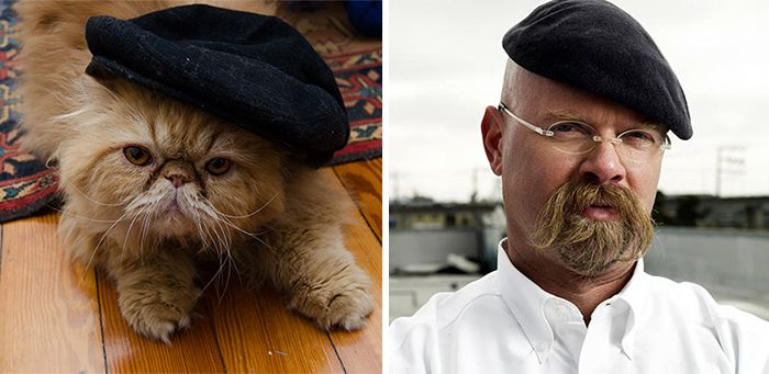 Jamie Hyneman and a cat