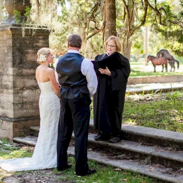 A couple's wedding ceremony with horses in the background