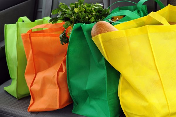 Reusable Grocery Bags