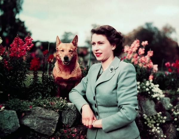Queen Elizabeth and Susan during a photo shoot