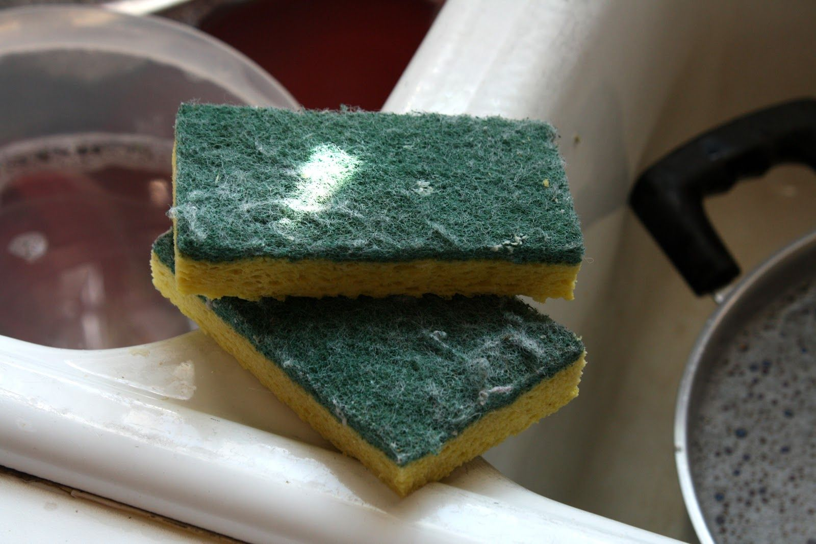 dirty sponge