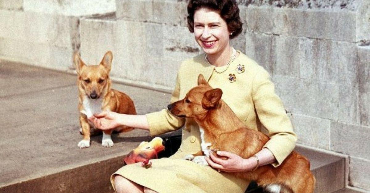 All Of Queen Elizabeth's Corgis Are Dead, Ends Royal Legacy