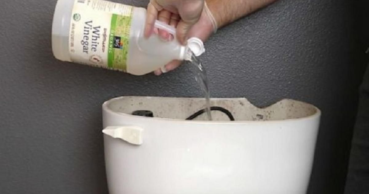 vinegar in toilet tank