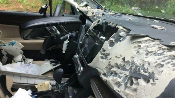 Bear attacked car