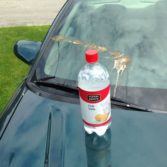 Club Soda on Car