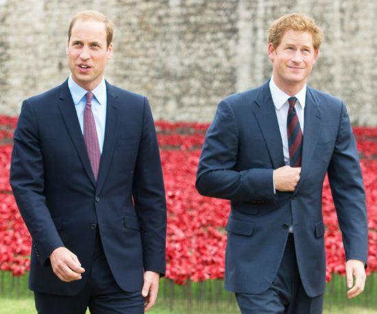 Prince William Prince Harry net worth