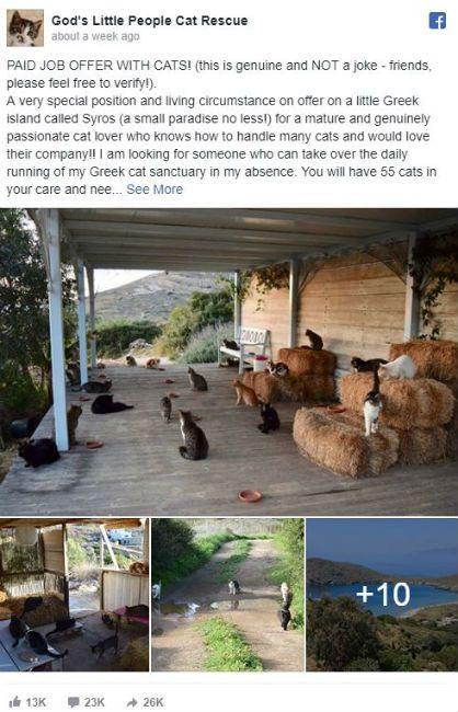 Greece Cat Sanctuary.