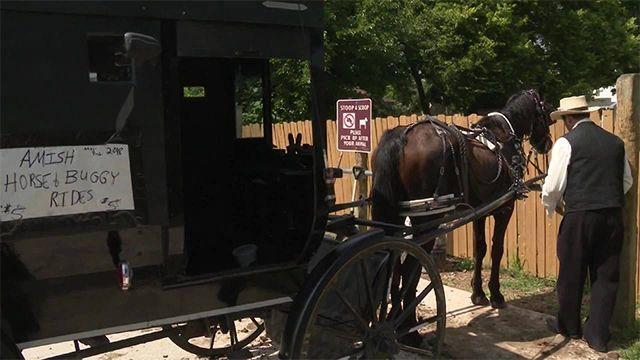 Amish Uber driver