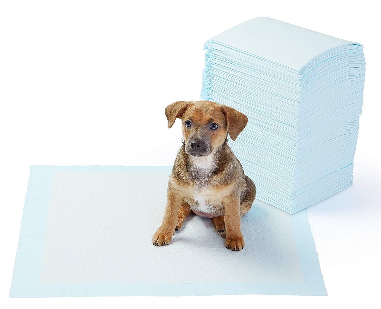 Dog pee pads