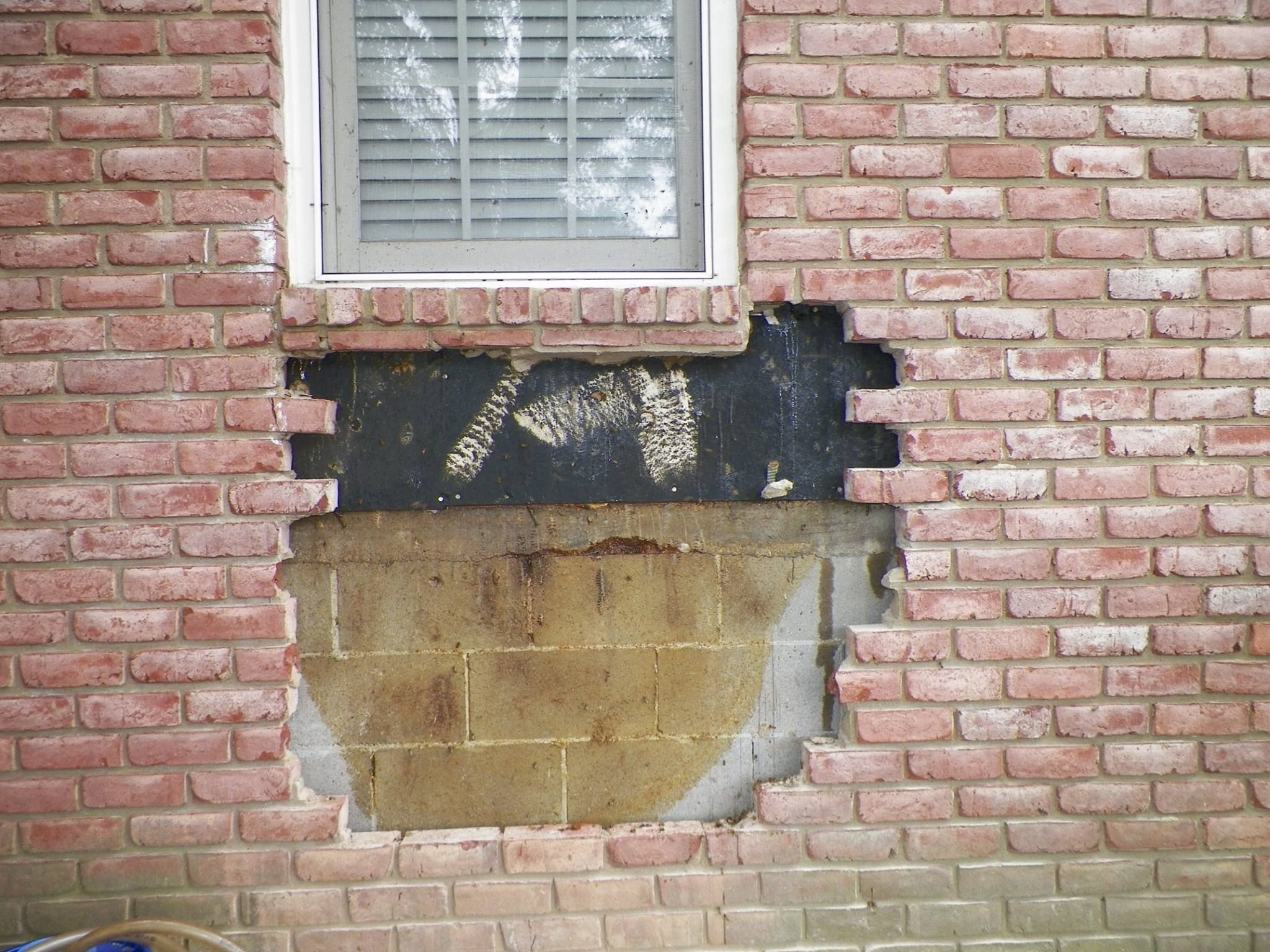 Aftermath of bee hive removed from brick wall