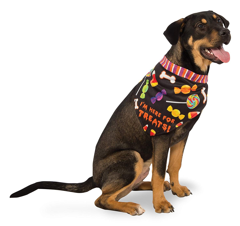 dog treats bandana