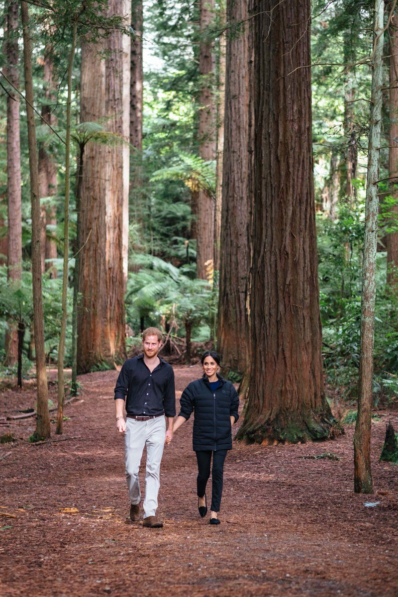 Harry and Meghan in New Zealand Redwood forest