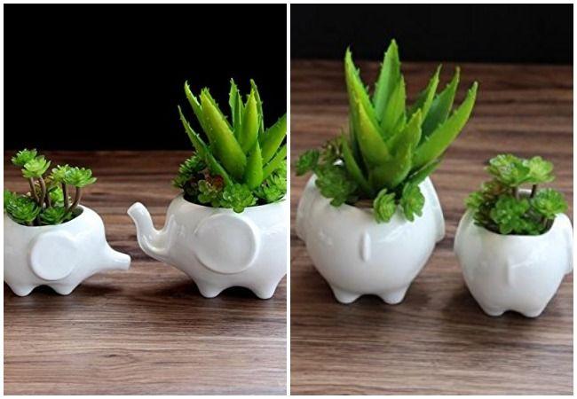 Elephant Plant Pots