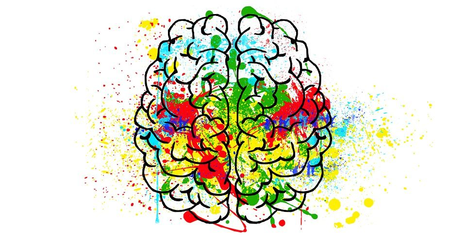 Brain drawing colorful