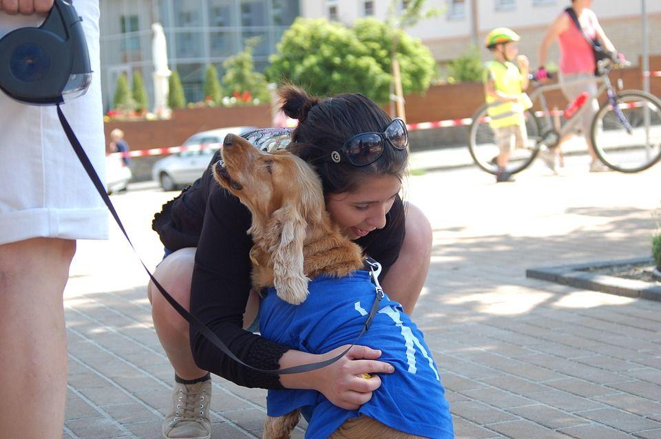 service dog giving hugs