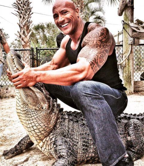 dwayne johnson and alligator