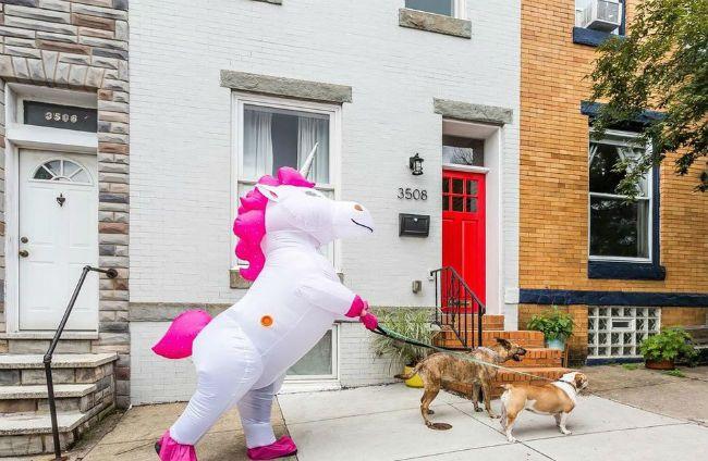 Unicorn home photos