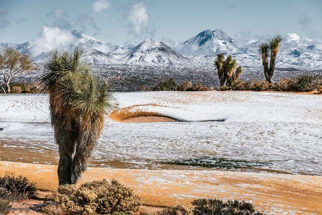 Desert Mountain, Arizona