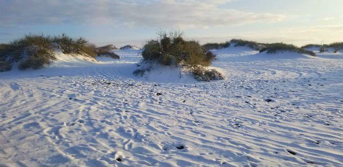 Hotwell Dunes