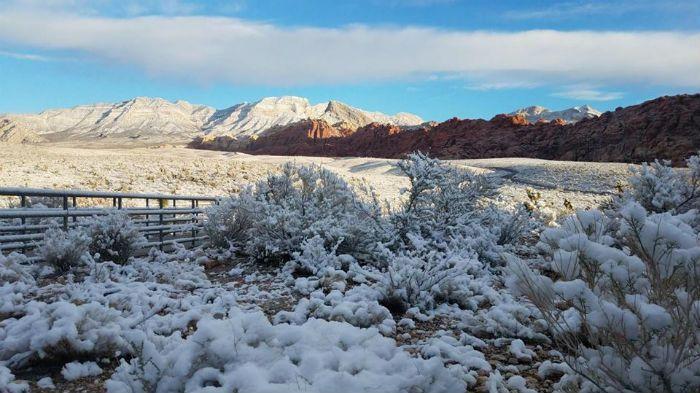 Las Vegas Snow